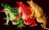 Froggy Orgy